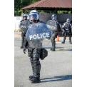 Scorpion Limb Guards and Solo Shield